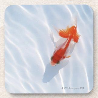 Goldfish 5 coaster
