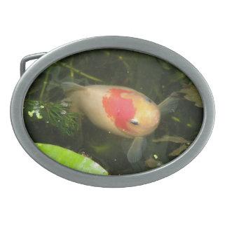 Goldfish Belt Buckle