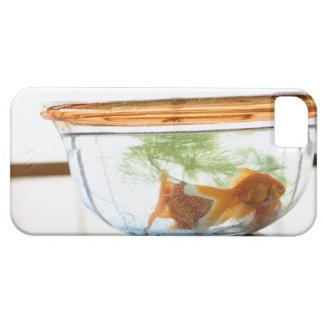 Goldfish bowl iPhone 5 cover