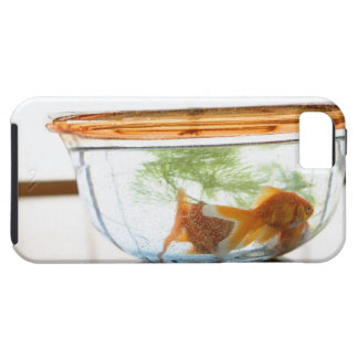 Goldfish bowl iPhone 5 covers