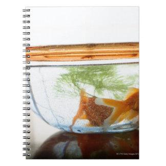 Goldfish bowl notebooks