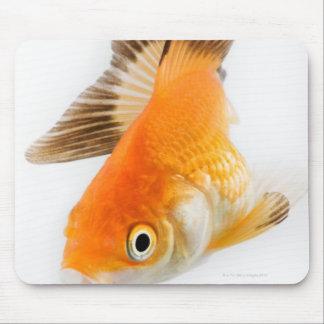 Goldfish (Carassius auratus) Mouse Mat