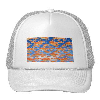 Goldfish Heaven Mesh Hats