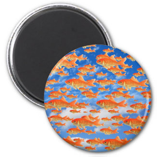Goldfish Heaven Refrigerator Magnets