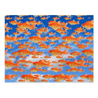 Goldfish Heaven Postcard