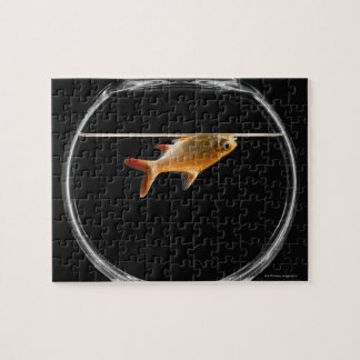 Goldfish in bowl 2 jigsaw puzzle