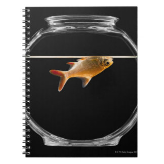 Goldfish in bowl 2 spiral notebook