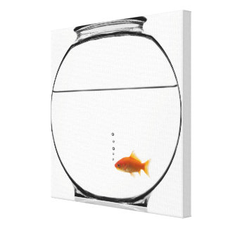 Goldfish in bowl canvas print