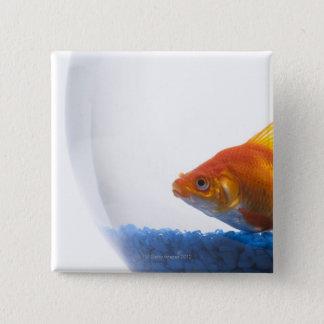 Goldfish in bowl on white background 15 cm square badge