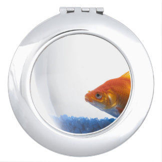 Goldfish in bowl on white background compact mirrors