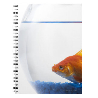 Goldfish in bowl on white background notebook