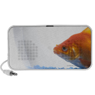 Goldfish in bowl on white background PC speakers