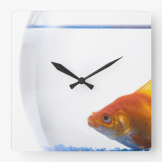 Goldfish in bowl on white background square wall clock