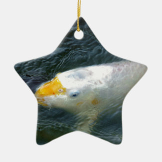 Goldfish In Lake Ceramic Star Decoration