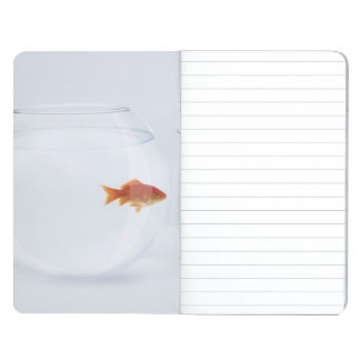 Goldfish in separate fishbowls looking face to fac journal