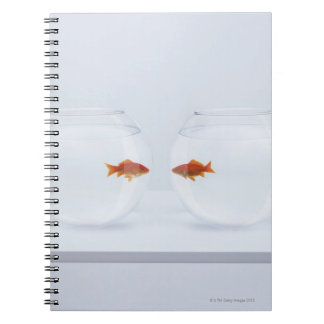 Goldfish in separate fishbowls looking face to fac spiral notebooks