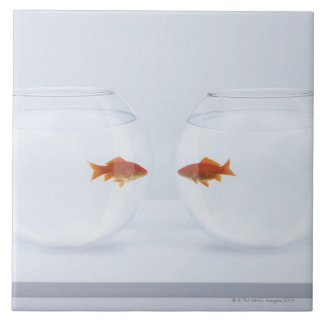 Goldfish in separate fishbowls looking face to fac tile