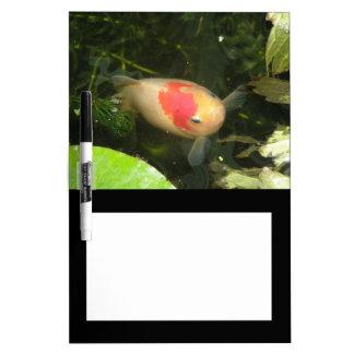 Goldfish Memo Board