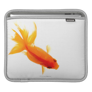 Goldfish, overhead view iPad sleeve