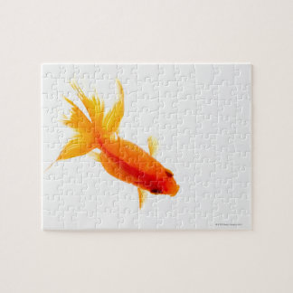 Goldfish, overhead view jigsaw puzzle