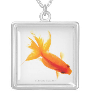Goldfish, overhead view silver plated necklace