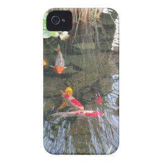 Goldfish Pond iPhone 4 Cases