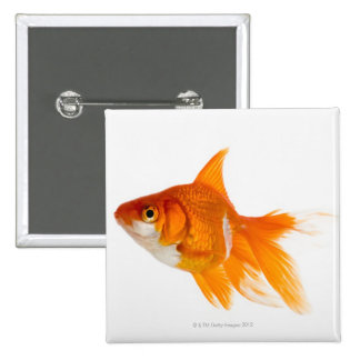 Goldfish, side view 15 cm square badge