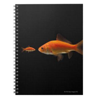 Goldfish Spiral Note Book