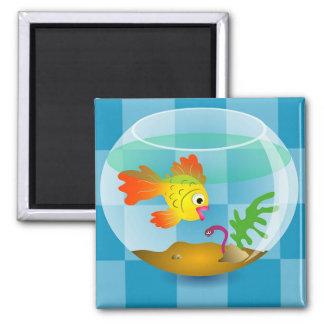 Goldfish Square Magnet