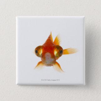 Goldfish with Big eyes 2 15 Cm Square Badge