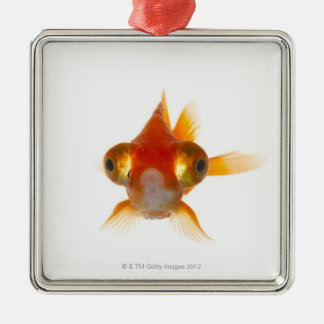 Goldfish with Big eyes 2 Christmas Ornament