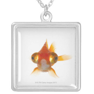 Goldfish with Big eyes 2 Silver Plated Necklace
