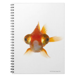 Goldfish with Big eyes 2 Spiral Notebooks