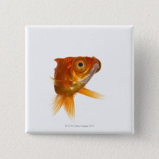 Goldfish with Big eyes 3 15 Cm Square Badge