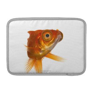 Goldfish with Big eyes 3 MacBook Sleeve