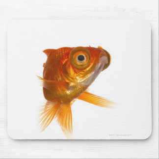 Goldfish with Big eyes 3 Mouse Mat
