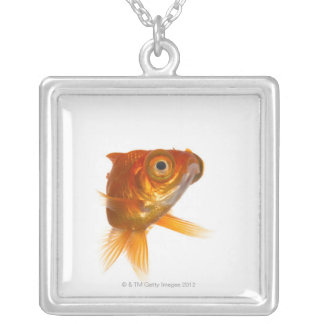 Goldfish with Big eyes 3 Silver Plated Necklace