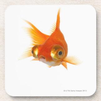 Goldfish with Big eyes Coaster