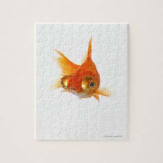 Goldfish with Big eyes Jigsaw Puzzle