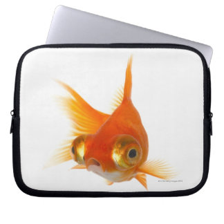 Goldfish with Big eyes Laptop Sleeve