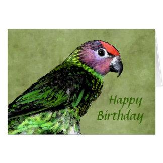Goldie's Lorikeet Birthday Card