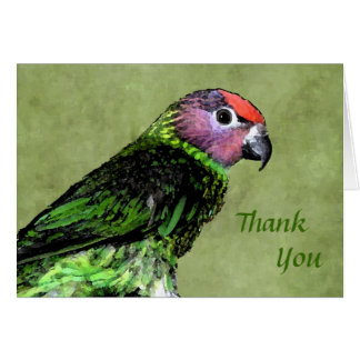 Goldie's Lorikeet Thank You Notecard Stationery Note Card