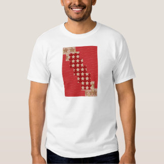 GOLDSTAR Constellation on Silky Red Fabric Pattern Shirts