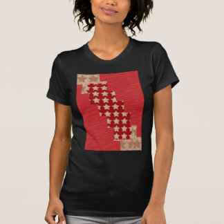 GOLDSTAR Constellation on Silky Red Fabric Pattern T Shirts