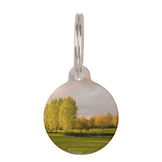 golf-25 pet name tags