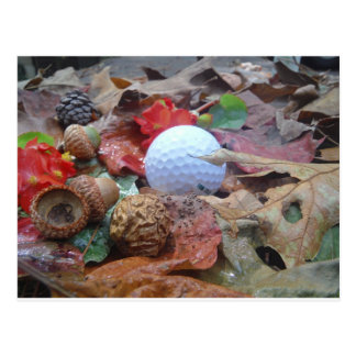 Golf Ball and fall leaves and acorns Postcard