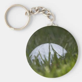 golf ball hiding key ring