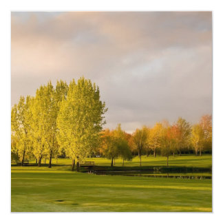 Golf Course in Autumn Invitations