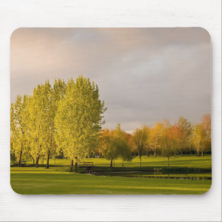 Golf Course in Autumn Mouse Pad
