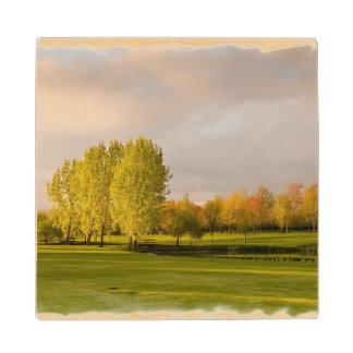 Golf Maple Wood Coaster